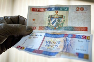 Единственная страна мира с двумя валютами откажется от одной из них