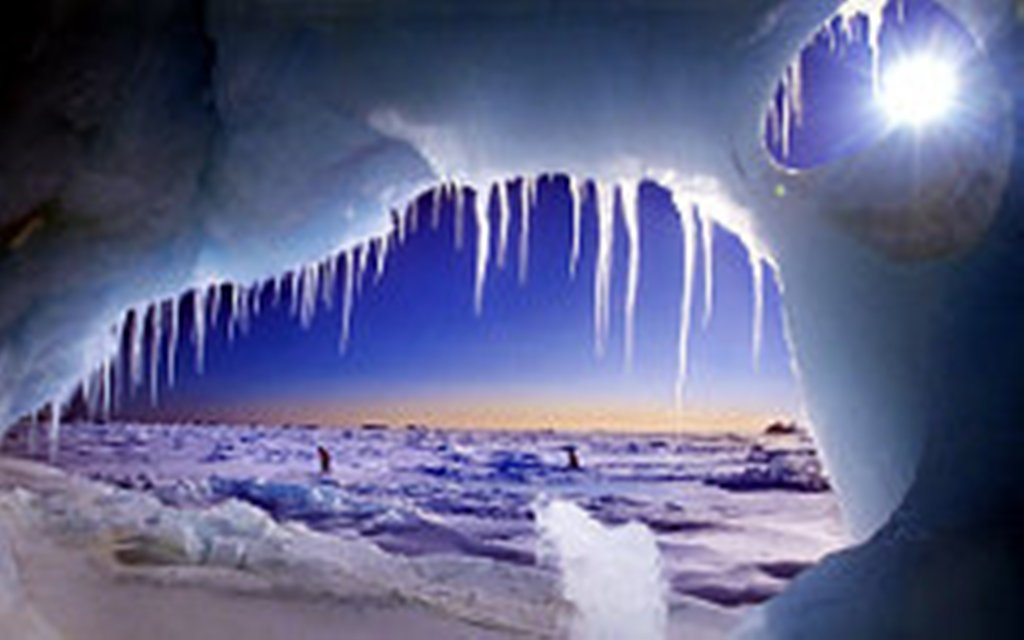 RF Arktikada iqtisadi zonanın genişləndirilməsi üzrə müraciətin rəsmiləşdirilməsini başa çatdırır
