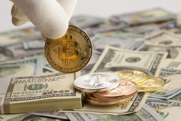 Bitkoin ilə maraqlanan investorların - 43 FAİZİ QADINLARDIR