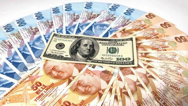 Dollar/TL məzənnəsi açıqlandı - Yeni rekord göstərici